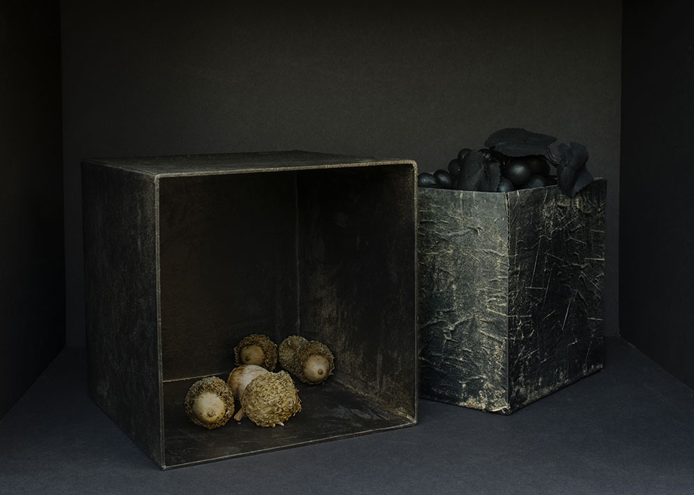 <em>Still Life with Ragged Boxes</em>